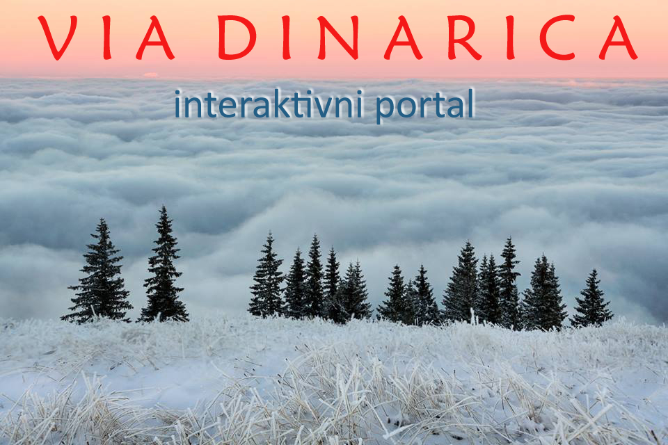 ViaDinarica_ip